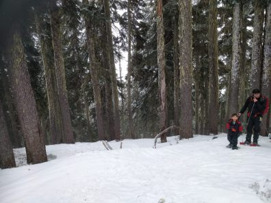 a man and child snowshoe up a hill in Strathcona Park