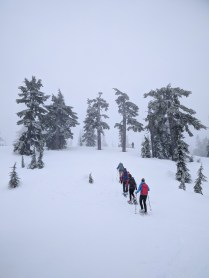 snowshoers in the mists on the summit of Mount Elma, Strathcona Park