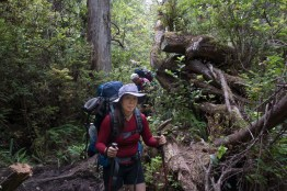 hiking on Vancouver Island, Tapaltos Beach and Cape Beale