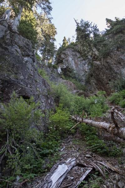 hiking up to Eden Mountain