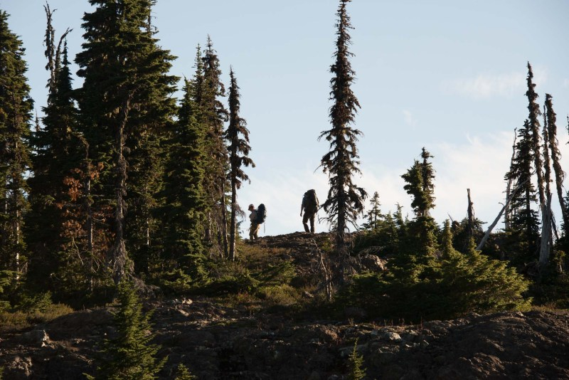 Augerpoint Traverse, Strathcona Park, Mount Washington to HIghway 28 Traverse