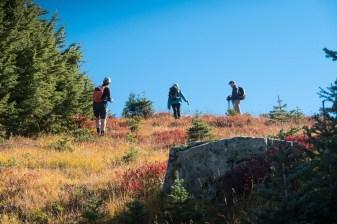 fall colours Hiking to Green Mountain