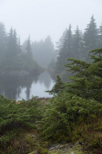 hiking to Heather Mountain on Vancouver Island