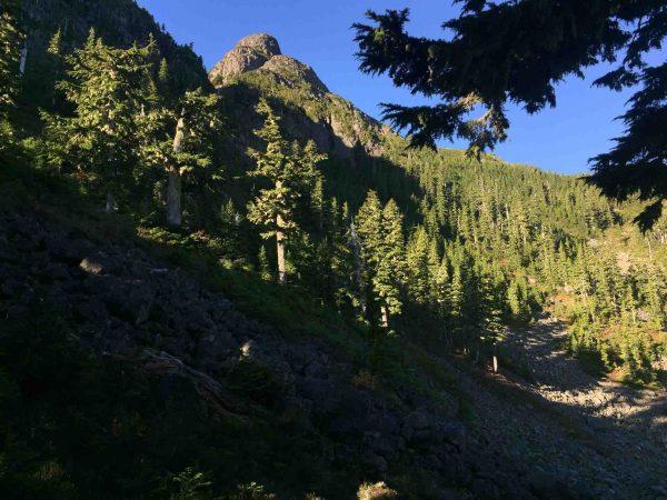 hiking to Tsitika Mountain on Vancouver Island