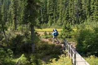 paradise-to-wood-mountain-5162