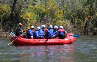 Several rafter groups came down the river