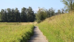 Trails at the Wildlife Refuge