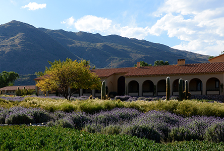 Colome 71xc Ten Stunning Wineries