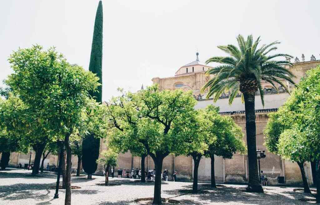 Day trip Córdoba: Sights & tips for your city trip