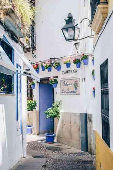 Cordoba34 - Dagtrip Córdoba: bezienswaardigheden & tips voor je stedentrip