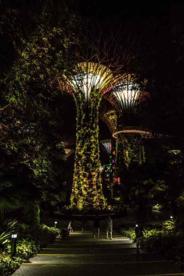 GardensbytheBaySingapore1
