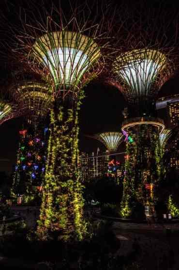 GardensbytheBaySingapore16 - Gardens by the Bay in Singapore: één van de mooiste plekjes in de stad
