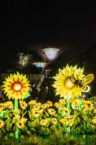GardensbytheBaySingapore17 - Gardens by the Bay in Singapore: één van de mooiste plekjes in de stad