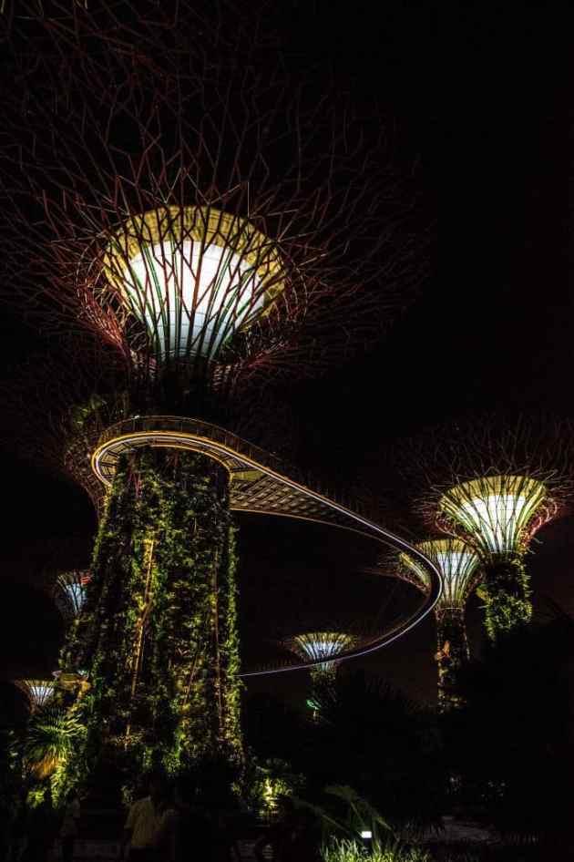 GardensbytheBaySingapore3