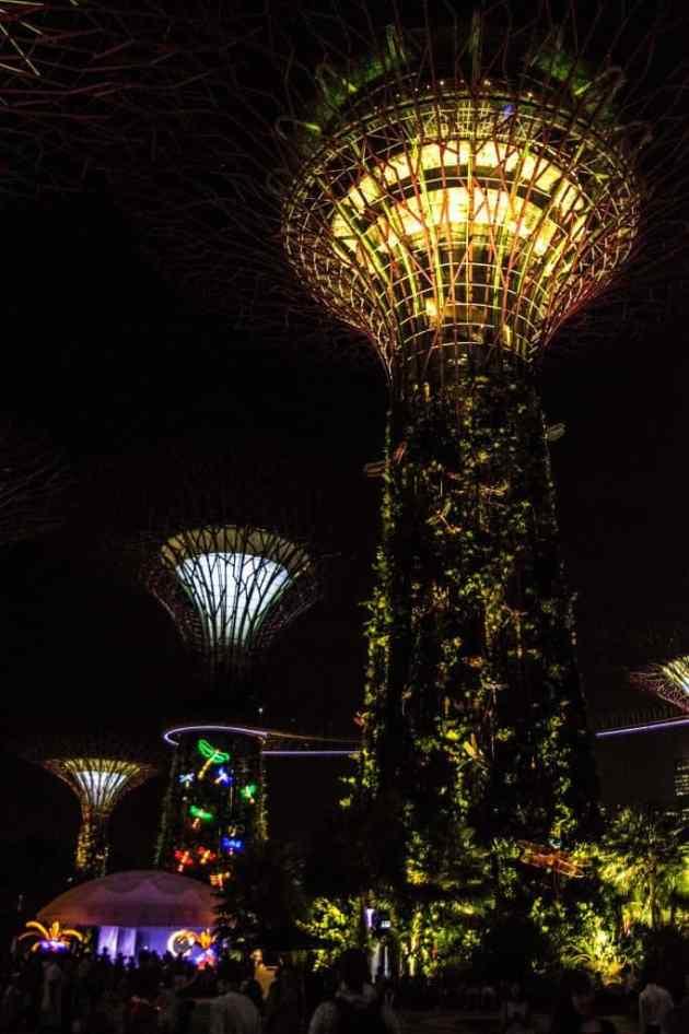 GardensbytheBaySingapore5