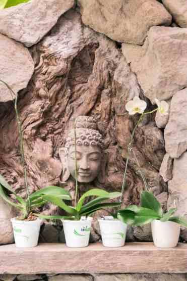 SebatuSanctuaryEcoResort22 - Sebatu Sanctuary Eco Resort: luxe glamping in de jungle van Ubud | Explorista's Top Hotels