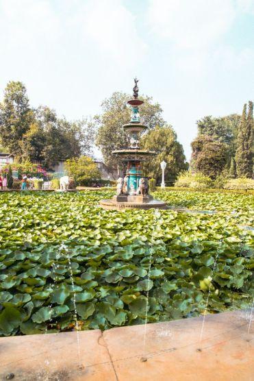 Udaipur30 - Udaipur bezienswaardigheden: wat te doen in Udaipur