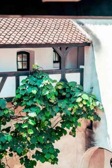 Bran Castle 9 - Kasteel Bran bezoeken: op ontdekkingstocht in Dracula's kasteel