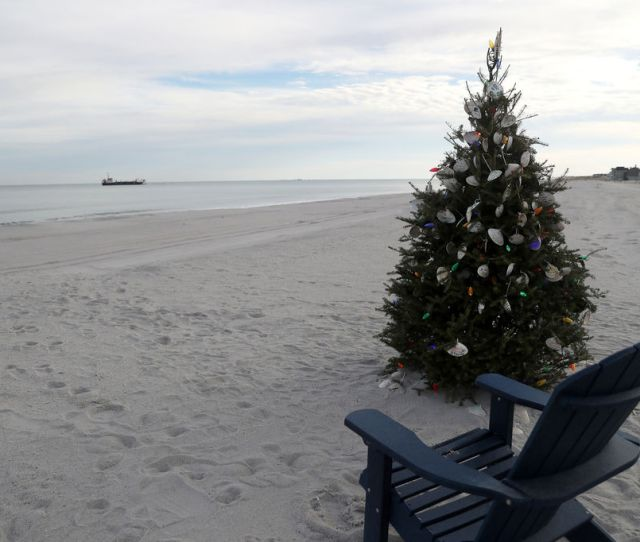 A Christmas Tree With Make Your Own Clam Shell Ornaments Is Set Up On Normandy Beach In Toms River Wednesday Dec   Lori M Nichols Nj