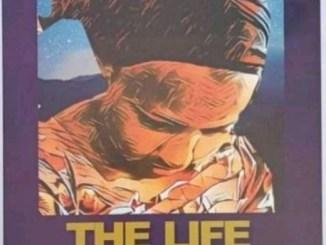 Summary of Life Changer Jamb 2022 Novel