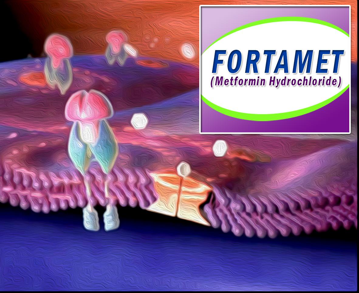 Fortamet (Metformin Hydrochloride)