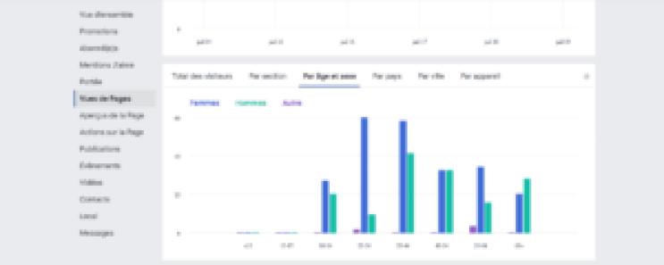 vues de la page analyser ses statistiques facebook