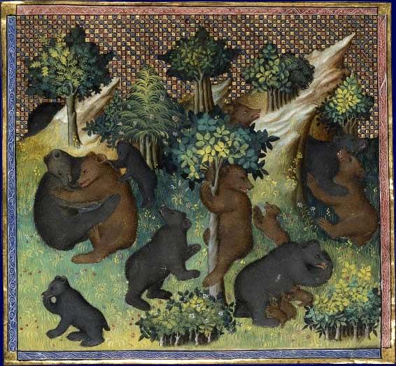 De l'ours et de toute sa nature .  Gaston Phébus, Livre de chasse France, début du XVe siècle Paris, BNF, département des Manuscrits, Français 616, fol. 27v.