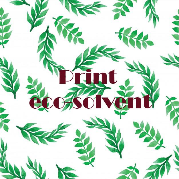 Print eco-solvent