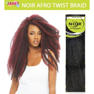 Janet Collection Noir Synthetic Hair Crochet Braid Afro Twist Braid