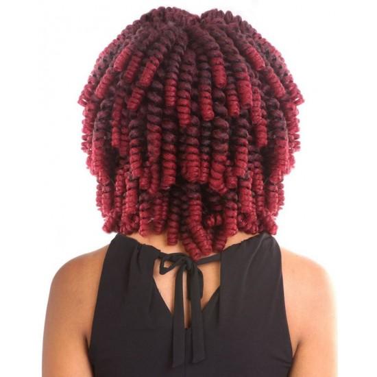 Mane Concept Afri Synthetic Hair Crochet Braid Loop Quick Curlon Becca Curl 20