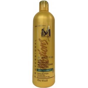 Motions Sulfate Free Active Moisture Neutralizing Shampoo 16 Oz