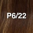 P6/22