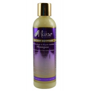 The Mane Choice Ancient Egyptian Anti Breakage And Repair Antidote Shampoo 8 Oz