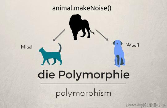 die Polymorphie - polymorphism