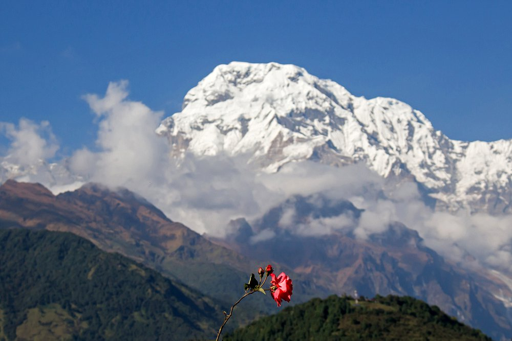 Annapurna Trekking Adventures Expressions Photography 107