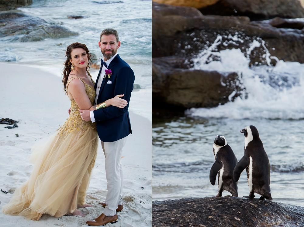 penguins simons town wedding