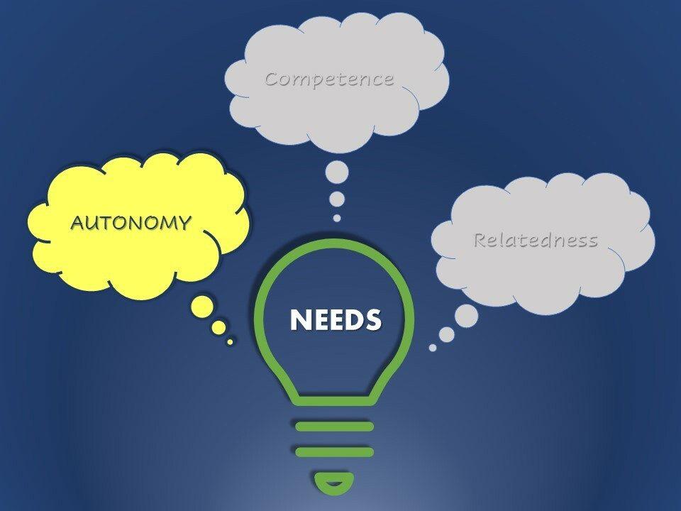 Autonomy is one of three employee psychological needs