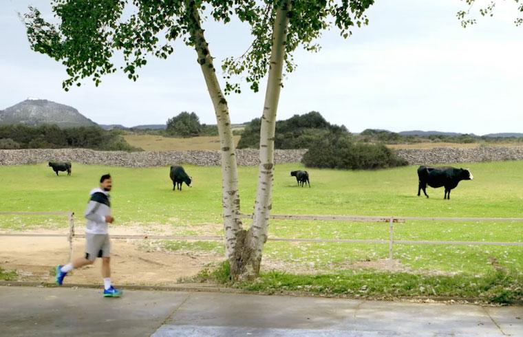 Uno de los ejercicios se trata de correr u rato por los campos de Menorca. Aire limpio, campo verde y bonitos paisajes.