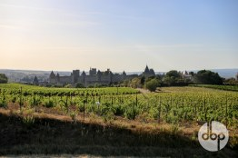 mirepiox-carcassonne-33