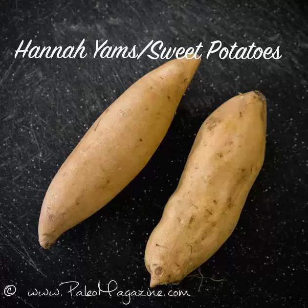 Food and Fitness- Health Benefits of Sweet potatoes 1