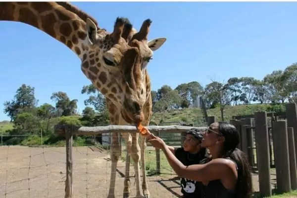 Family is everything! Checkout photos of Kelly Rowland spending quality time with her family 7