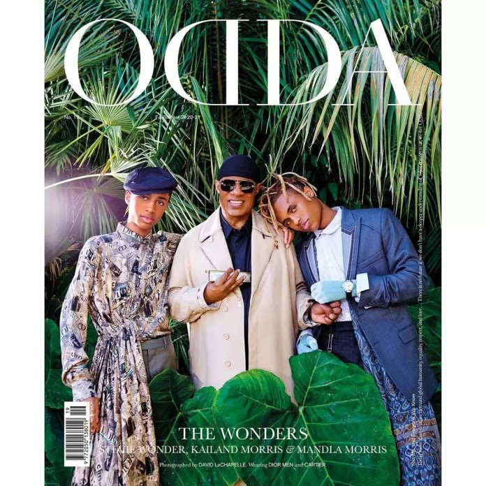 ODDA 19 Stevie Wonders