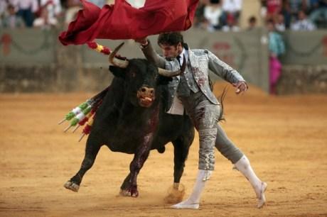 Spanish bullfighter Rivera in a costume by Giorgio Armani on Exshoseme.com