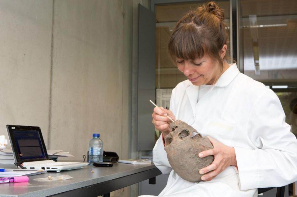 Fysisch antropologe Marit Van Cant meet één van de schedels op © Geert Vyverman