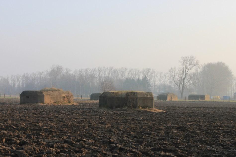 Duitse bunkers in Stabroek. De borstweringen en tussenliggende loopgraven zijn helemaal verdwenen © Wouter Gheyle