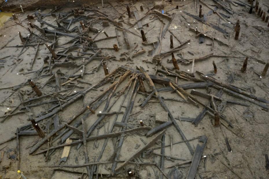Overzicht van een roundhouse opgebouwd uit twee cirkels van verticaal geplaatste, eikenhouten palen, die het dak gedragen hebben. De horizontale palen in waaiervorm zijn de dakspanten, die bij de brand neergestort zijn op de vloer © Cambridge Archaeological Unit