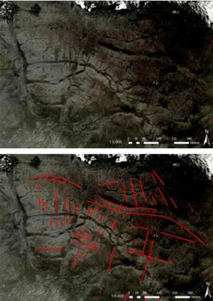 De percelering van het landschap bij Nieuwlande (op basis van Navteq 2010, Bing Maps).