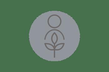 Minimize Soybean Harvesting Loss and Maximize Cost per Bushel