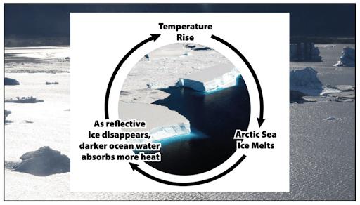 The ice-albedo effect