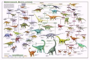 Dinosaur Evolution Poster